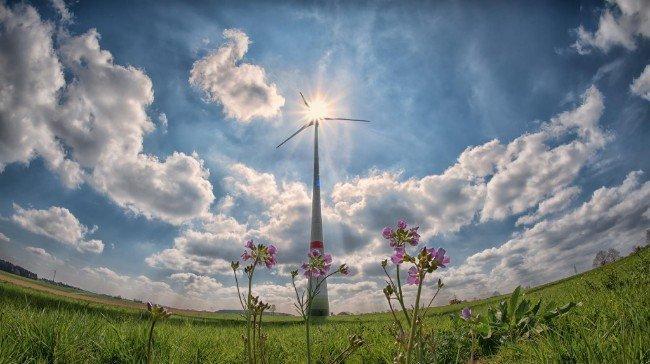 Newsletter 1: Come colmare il divario di competenze tra domanda e offerta nel settore delle energie rinnovabili?