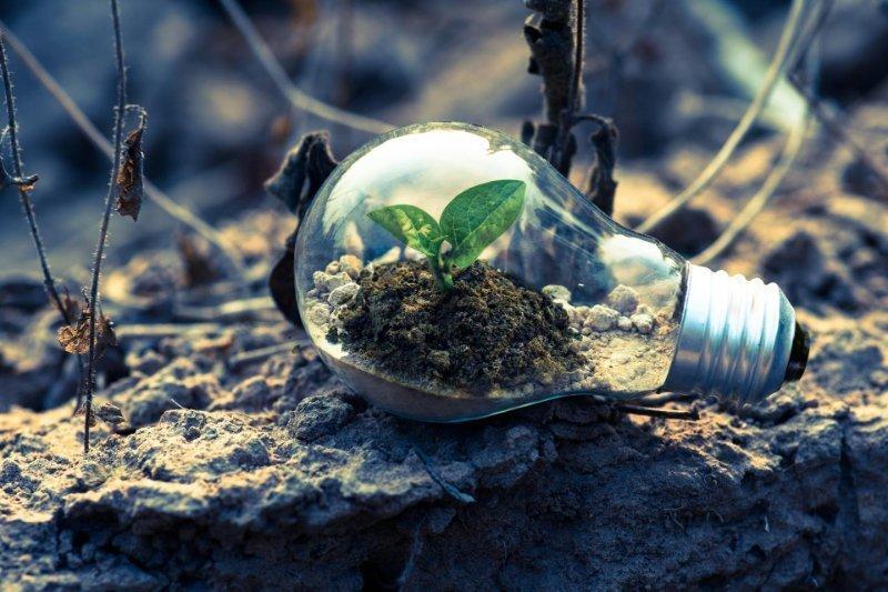 Newsletter 2: Corso online gratuito per futuri professionisti del settore delle energie rinnovabili